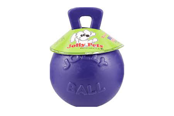 Free Jolly Pets Dog Toy