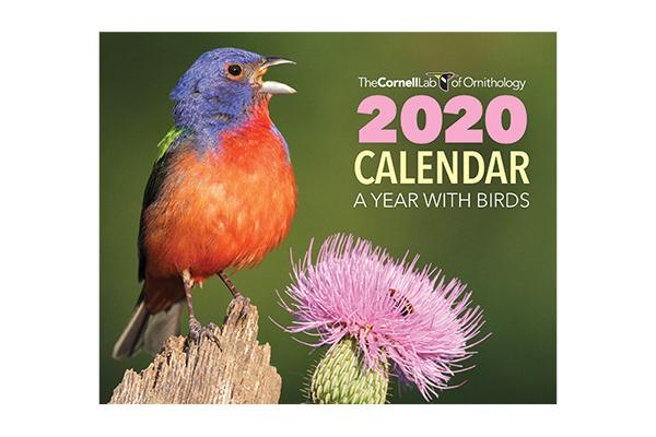 Free 2020 Calendar Sample