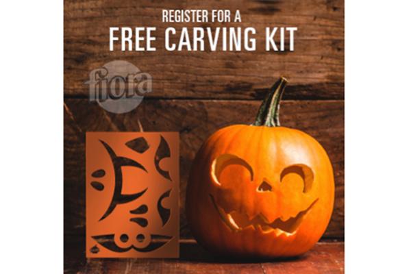 Free Pumpkin Craving Kit