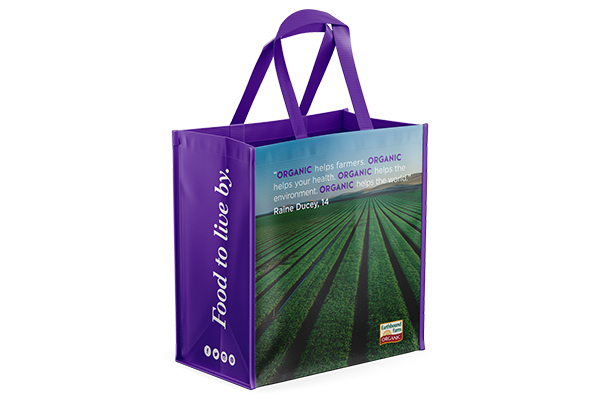 Free Earthbound Shopping Bag
