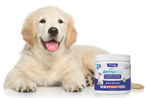 Free Dermabliss Pet Allergy Care