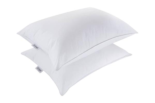 Free Beautyrest Pillows