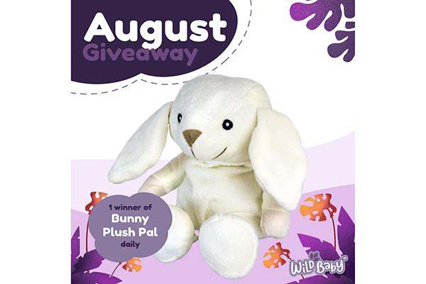 Free Bunny Plush Toy